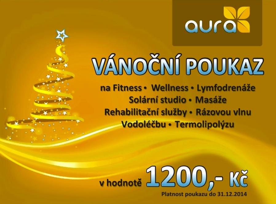 Stiborek - Studio Aura - permanentky Vánoční poukazy 2013-2